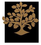Logo - Wrocławska Fundacja Ochrony Zdrowia Psychicznego i Rozwoju Psychoterapii